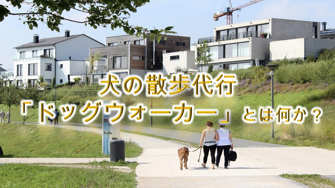 犬の散歩代行「ドッグウォーカー」とは何か?