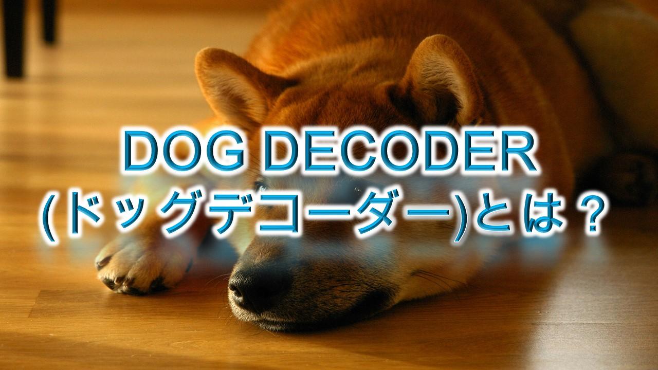 DOG DECODER(ドッグデコーダー)とは?【愛犬のしぐさから気持ちを知る方法】