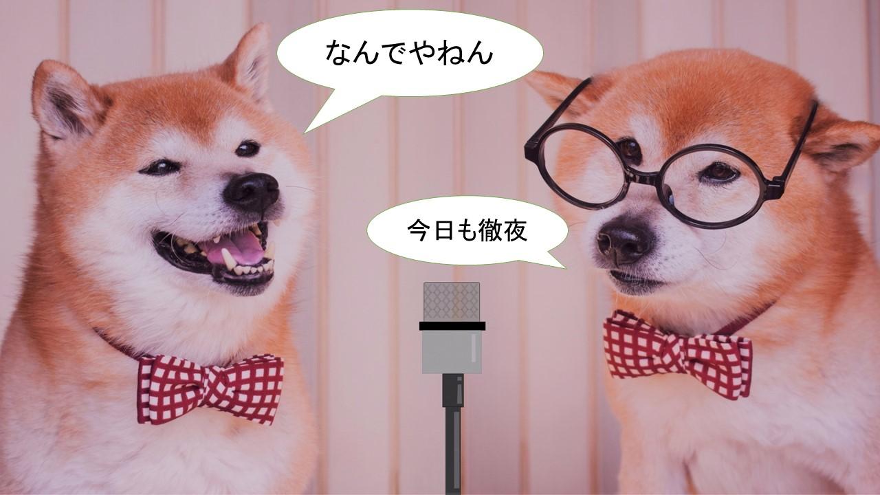 柴犬の漫才